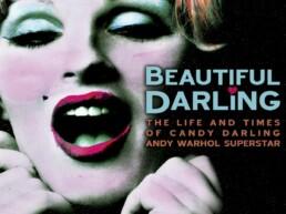 Beautiful Darling (2010) - poster